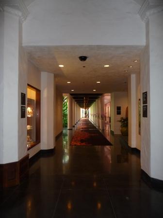 2009 HAWAII 1784