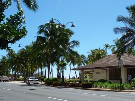 2009 HAWAII 1794