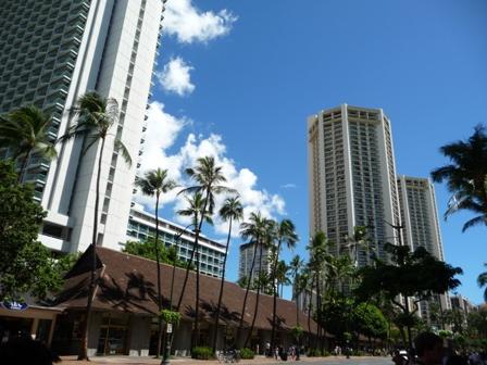2009 HAWAII 1793