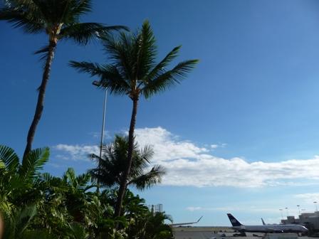 2009 HAWAII 1821