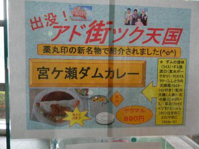 宮ヶ瀬ダムカレーDSCN6206