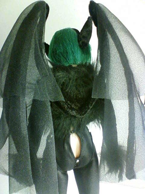 bat_b.jpg