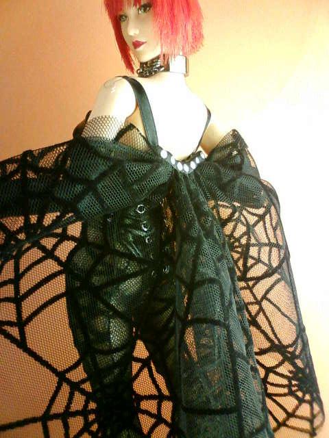spider_net_b.jpg