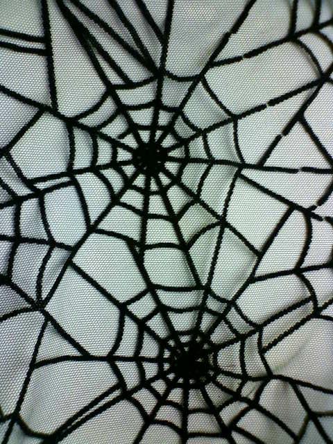 spider_net_c.jpg