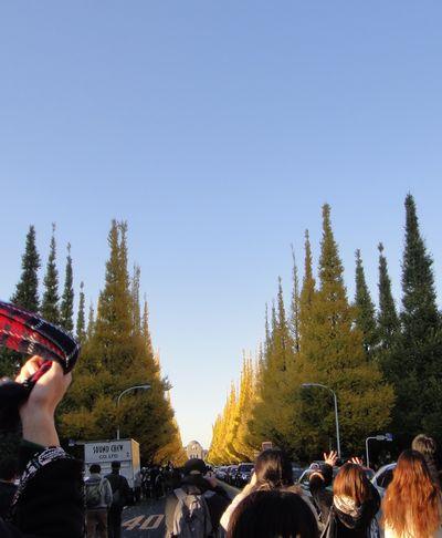 gaien201212b.jpg