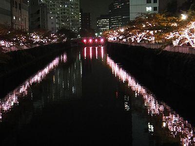 meguro201111g.jpg