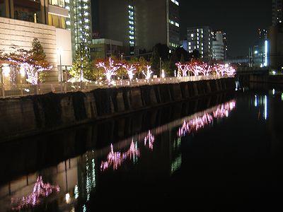 meguro201111h.jpg