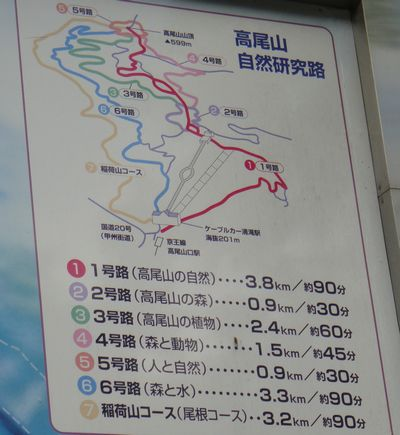 takao201206b.jpg