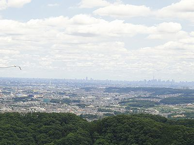 takao201206f.jpg
