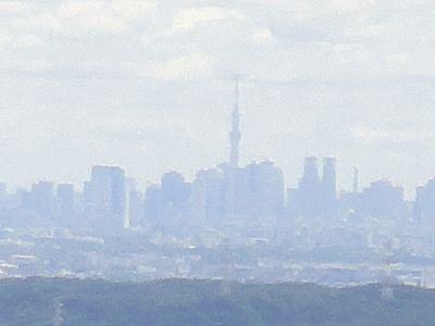 takao201206g.jpg