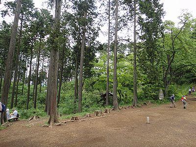 takao201206j.jpg