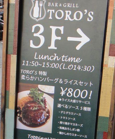toro201301g.jpg