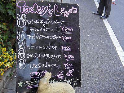 usagi201112f.jpg
