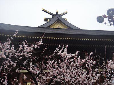 yuume201203a.jpg