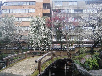 yuume201203e.jpg