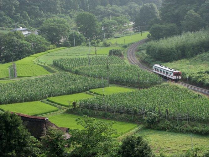 キハ52 岩泉線