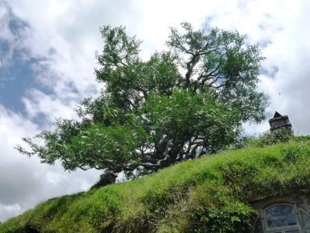 ホビット村BAG ENDの木