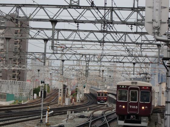 桜と共に電車色々10