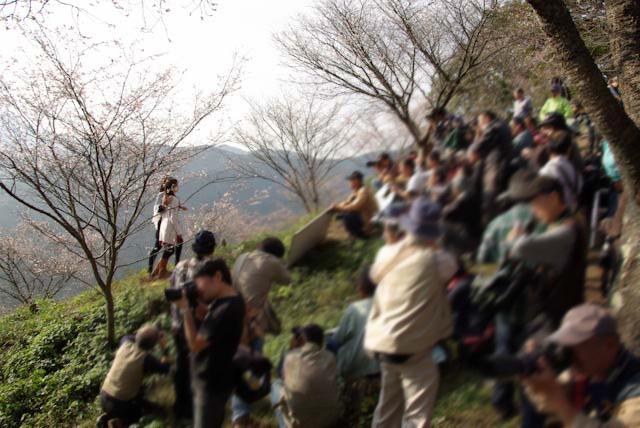 111113桜山モデル15