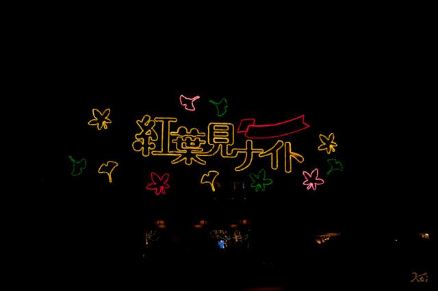 111027森林公園ライトアップ01