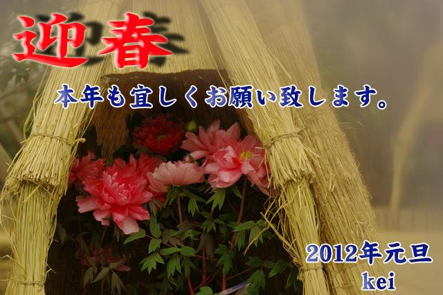 2012元旦