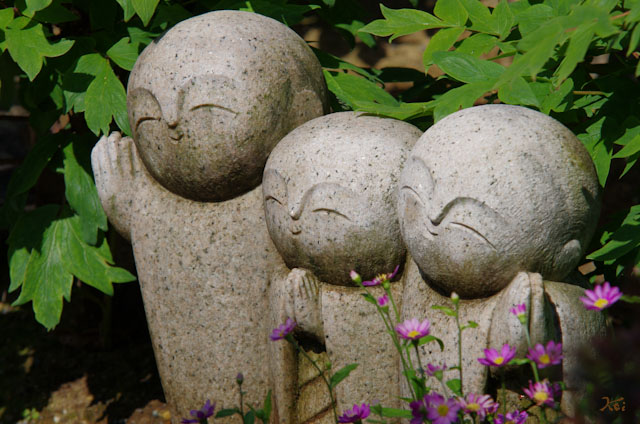 20120513牡宝徳寺18