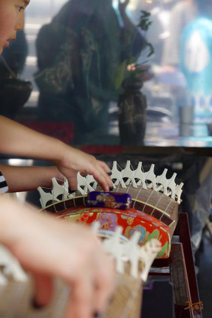 20120617花菖蒲12