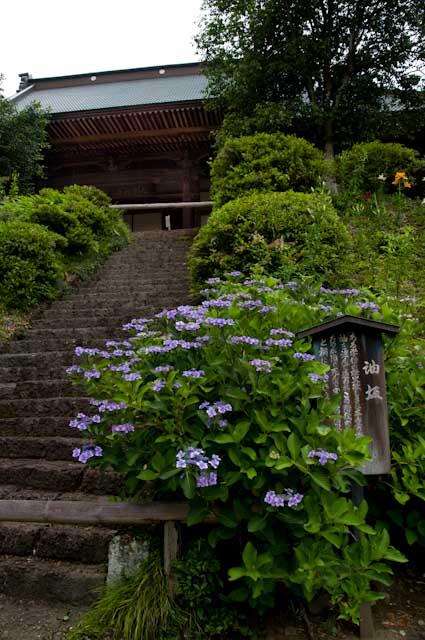 20120701大中寺05