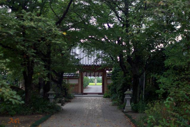 20120915彼岸花_常楽寺11