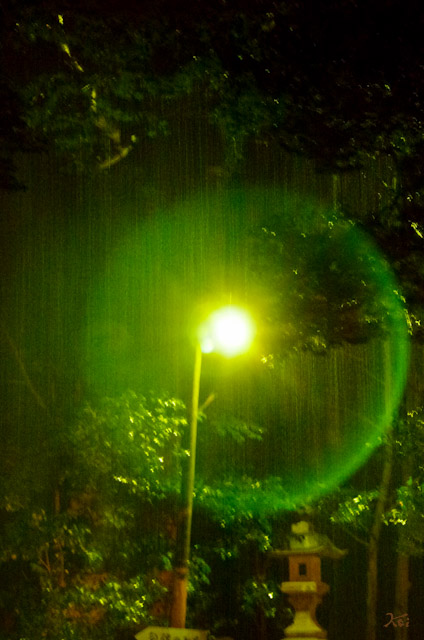 20130203加茂神社13