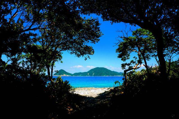 木立を通り抜けて長目の浜へ