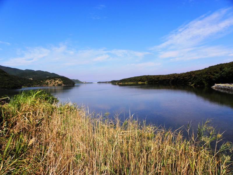 秋のなまこ池 全景