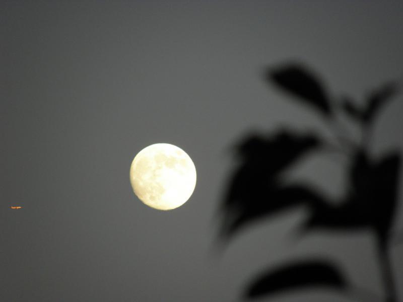 お月様の横を飛行機が
