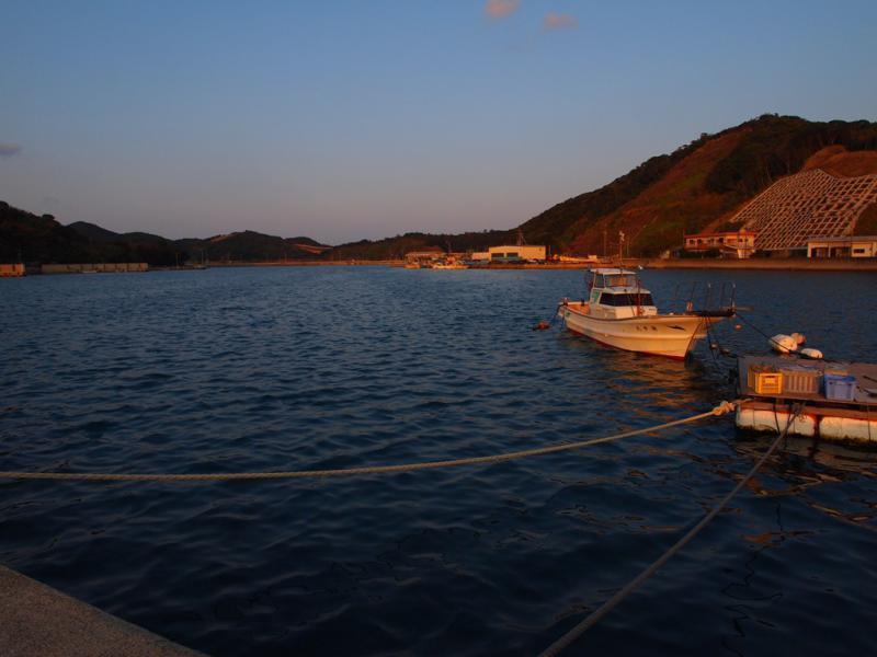 夕暮れの湾でアジ・カマスが釣れます