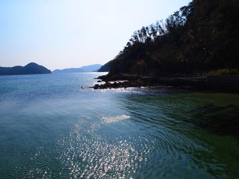 桑之浦 の海