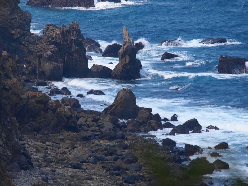田之尻海岸の岩場