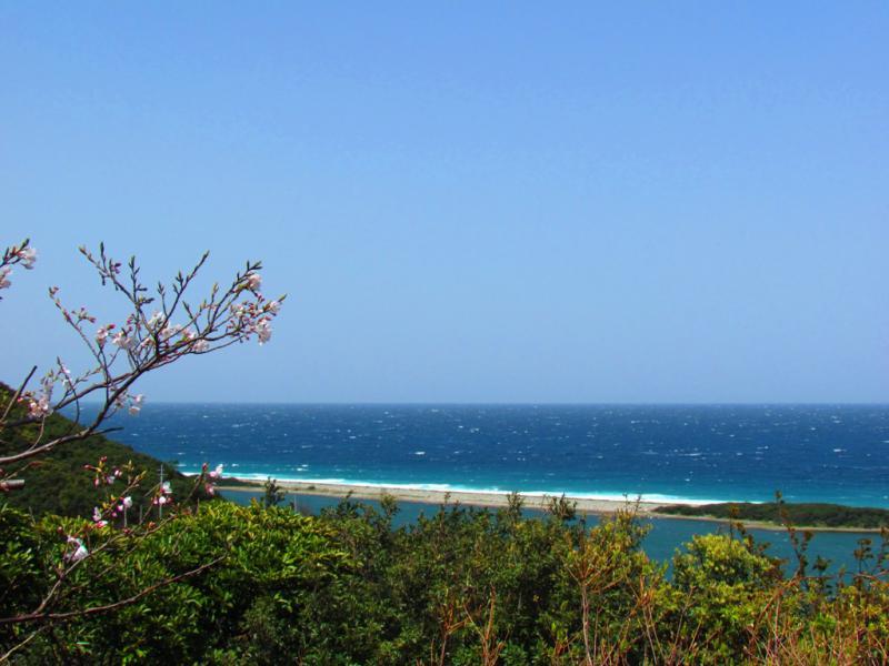 くじら山から 長目の浜