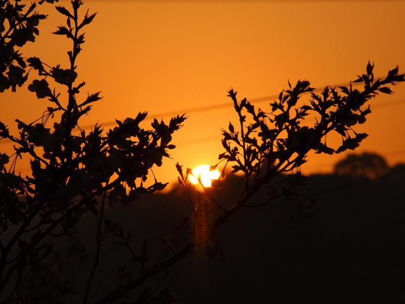 日の出 2