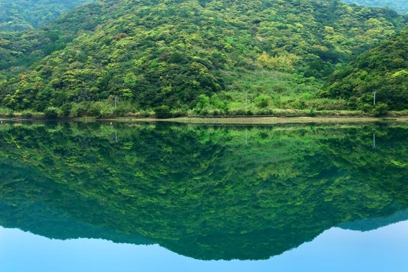 新緑を映す湾