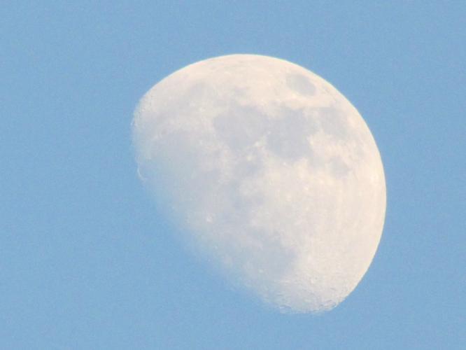 夕暮れのお月さま