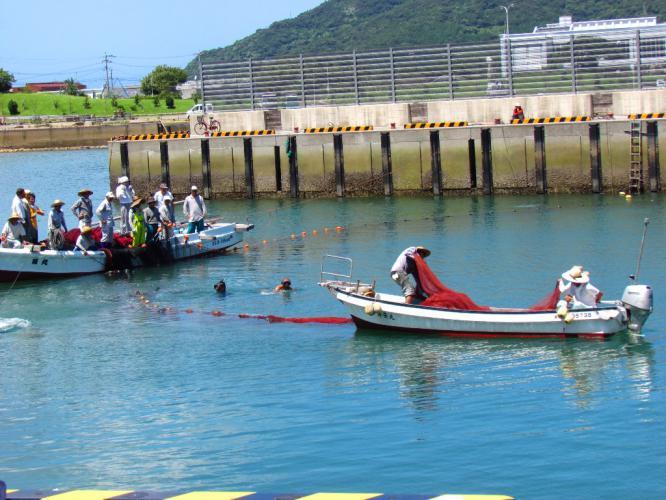 カマス漁 3