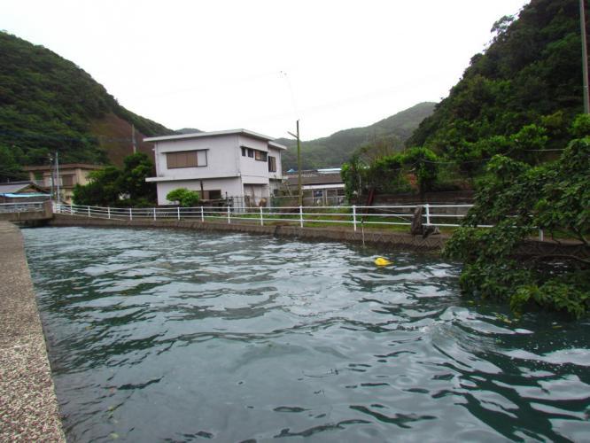 わが家 裏の川