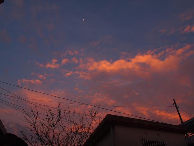 朝焼けの空に