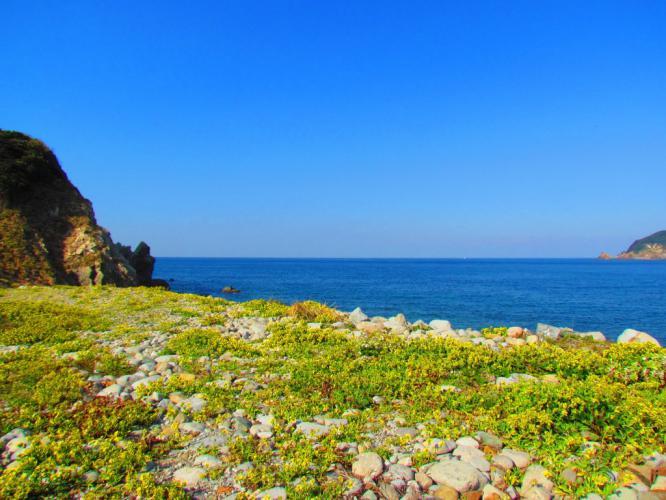 里 西海岸