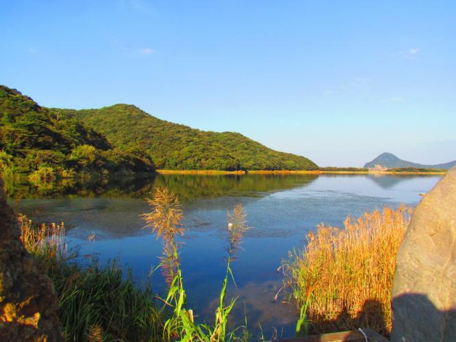 秋のくわざき池  2