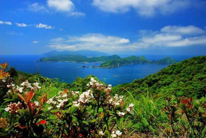 鹿島を望む