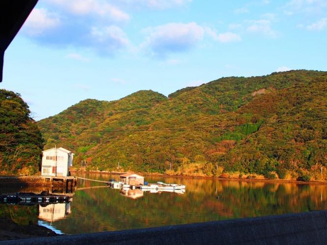 朝陽に染まる湾