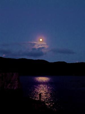 月に照らされる甑大明神