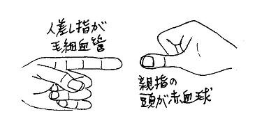 手指で例示