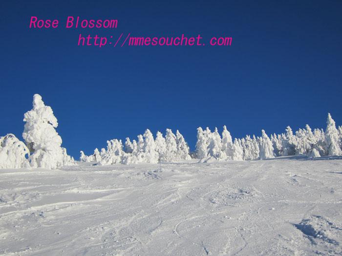 201102114.jpg
